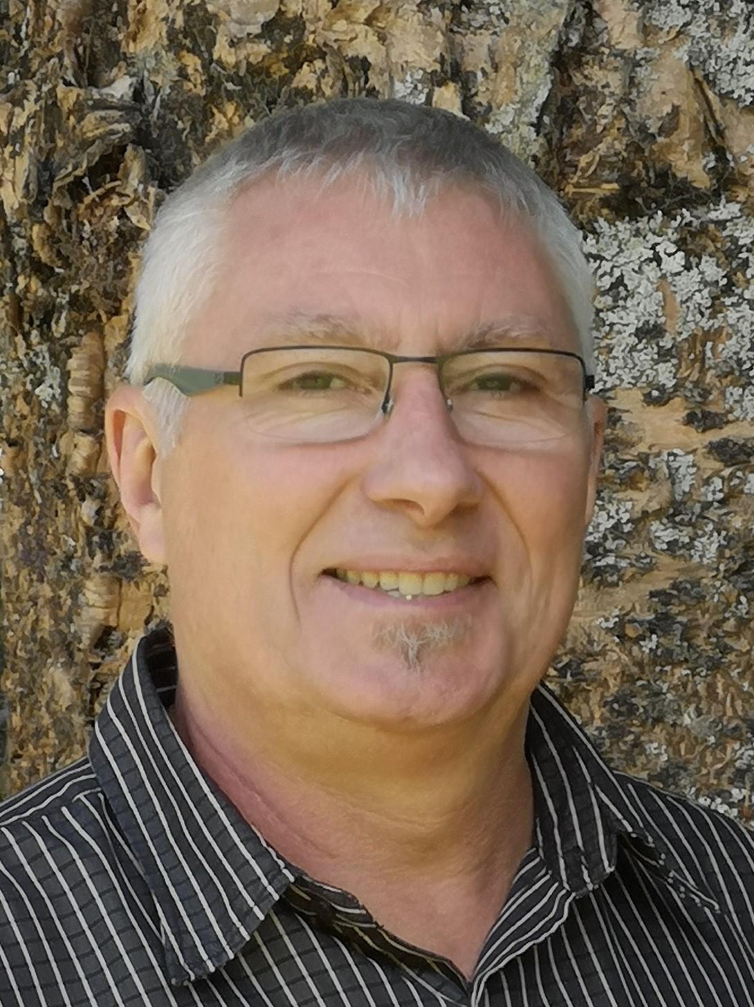 Tim Robinbson - Kauri Tree
